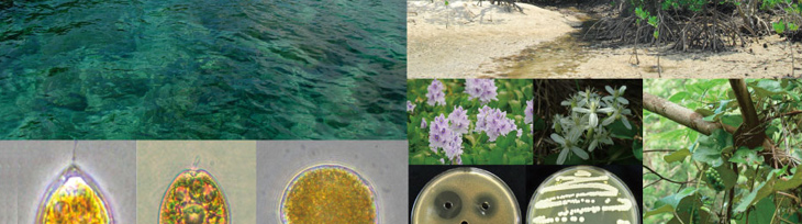 生物資源探索